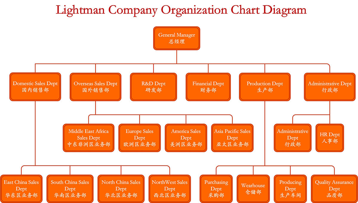 Lightman Company Organization Structure Diagram-English